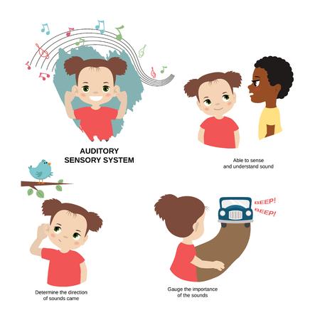 Illustration vectorielle des sens humains. Système sensoriel auditif: capable de détecter et de comprendre le son, d'évaluer l'importance des sons, de déterminer la direction des sons.