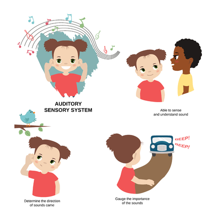 Vector illustration of human senses. Auditory sensory system: able to sense and understand sound, gauge the importance of the sounds, determine the direction of sounds came.