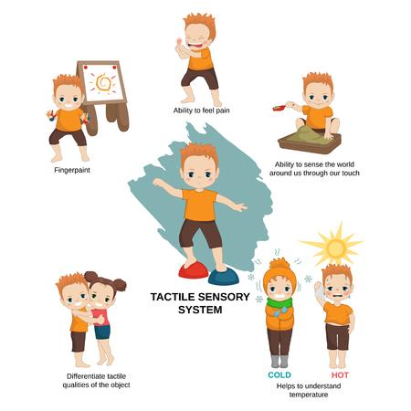 Illustration vectorielle des sens humains. Système sensoriel tactile: capacité à ressentir le monde qui nous entoure grâce à notre toucher, aide à comprendre la température.