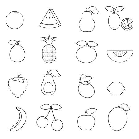 Fruits isolated on the white background. Illustration
