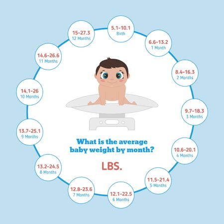 Average Baby Weight in Pounds. Baby first year development infographic. Vector illustration. Illustration