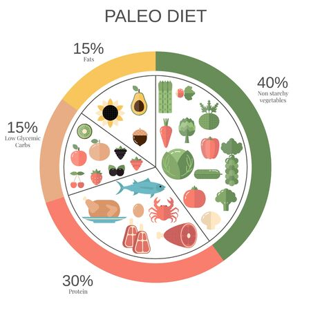 Foods infographics. Paleo Diet food pie chart with recommended diary portions. Vektorové ilustrace