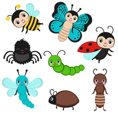 Set of cute cartoon insects isolated on white. Fly bug, cute butterfly and beetle. Funny garden animals. Vector illustration.