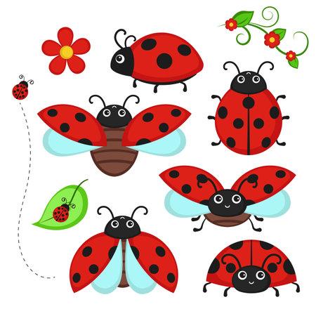 Set of ladybug characters isolated on white. Vector illustration.