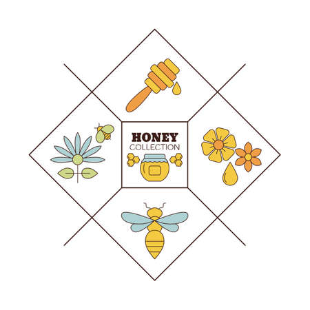 Vector design packaging design templates with honey collection. Organic honey collection.