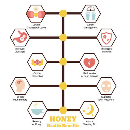 Foods infographics. Health benefits of honey.