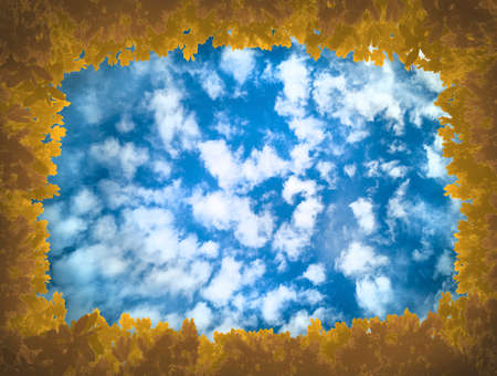 Yellow-brown leaves as frame of sky,covered with cirrus,cumulus clouds.Frame