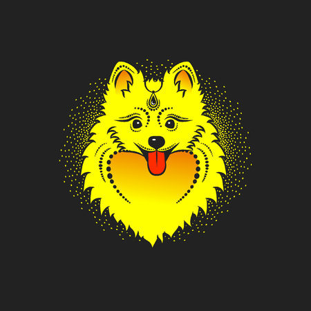 Vector image of a yellow dog. Pomeranian dog head