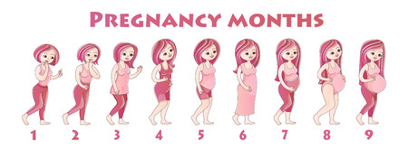 Infographics girls pregnancy by month.Many young girls are standing one behind other, concept of stages of pregnancy, sketch color illustration, vector Illustration