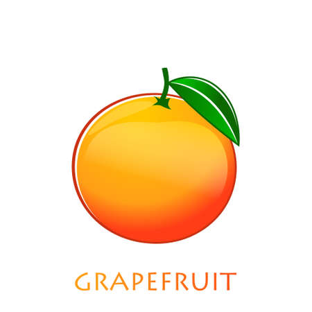 Grapefruit flat vector illustration. Orange citrus creative clipart with typography for healthy cooking menu, logo, design element