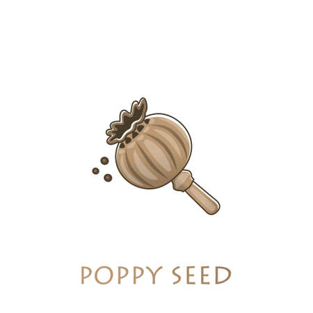Poppy box and poppy seeds on a light background. Vector illustration Stock Illustratie