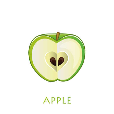 Green apple in cut. Vector flat illustration isolated on white background