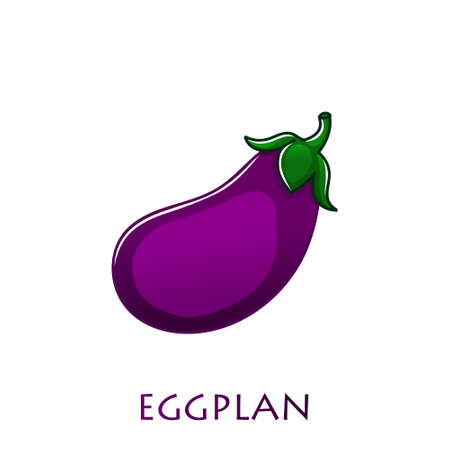 Eggplant isolated on white. Aubergine. Vector illustration. Vegetarian food