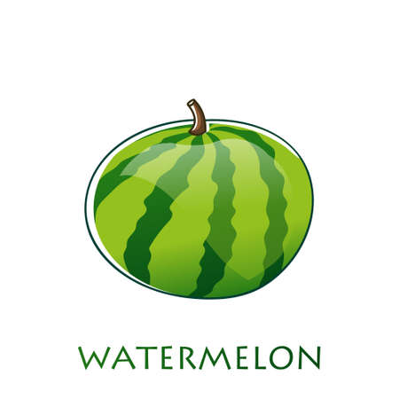 Watermelon vector illustration in flat design isolated on white background. Stock Illustratie