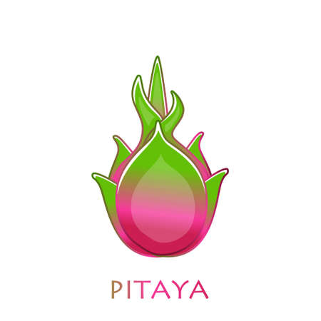 Cut pitaya icon. Dragon Fruit. Illustration with isolated cartoon pataya with title on a white background. Vector tropical fruit. Flat vector stock illustration. Pitaya logo. Pitaya in hand drawn