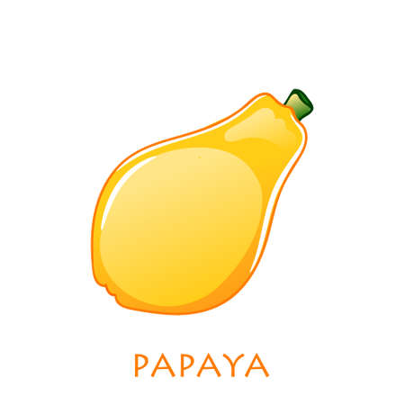 Sweet whole papaya tropical exotic fruit. Vector illustration cartoon flat icon isolated on white.