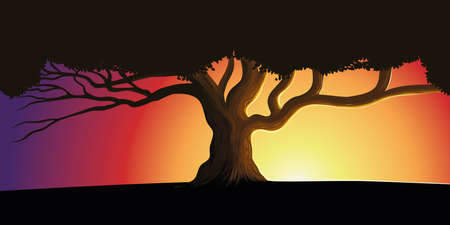 Silhouette of a lone tree against a beautiful sunset. Background nature vector illustration