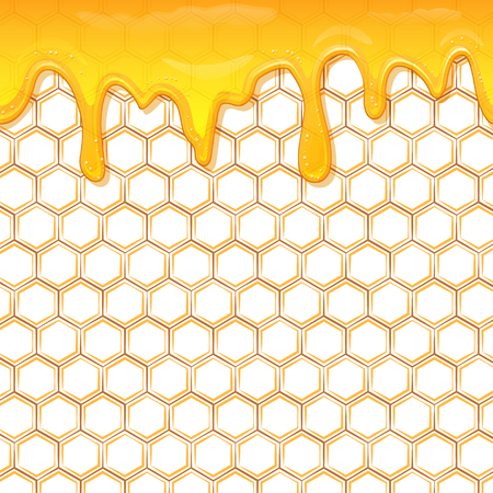 Dripping honey. Honey splash dripping sweet drops from bee honeycomb poster for beekeeping honey, honey shop or bakery.