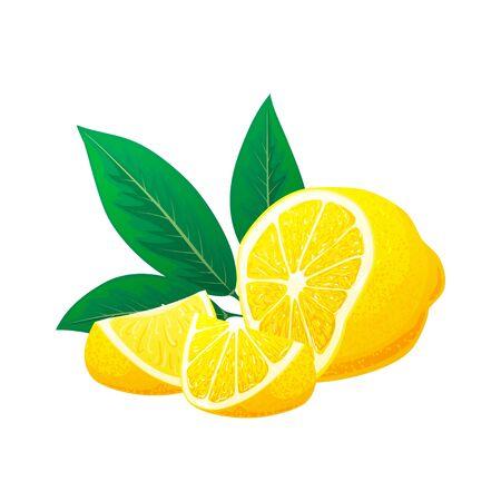 Lemon, slices of lemon with leaves. Vector. Logo concept. Hand drawn vector illustration