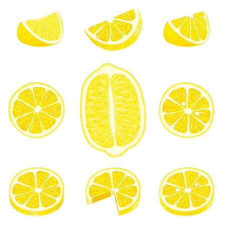 Set of whole, cut in half, sliced on pieces fresh lemons and lemon peel. Hand drawn vector illustration isolated on white background
