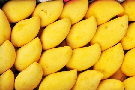 Thai mango photo