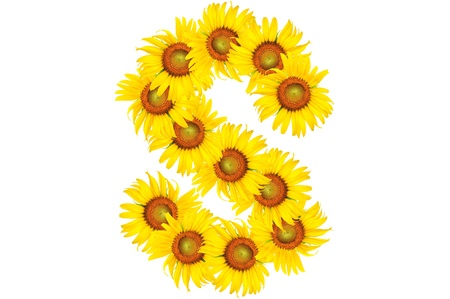 Beautiful yellow Sunflower alphabet, isolated. capital letter S photo