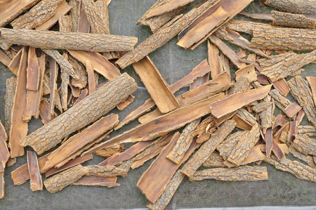 Chinese traditional herbs as alternative medicine. For concepts such as healthcare and medicine, healthy lifestyle, and tradition.  photo