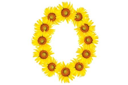 beautiful sunflower alphabet number zero