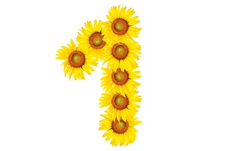beautiful sunflower alphabet number one photo
