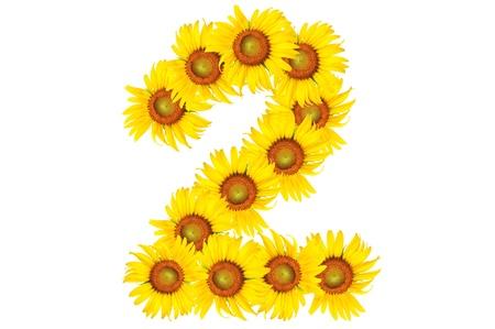 beautiful sunflower alphabet number two photo