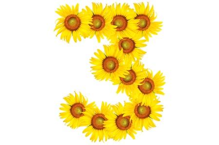 beautiful sunflower alphabet number three photo
