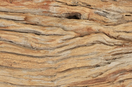 wood aging background texture
