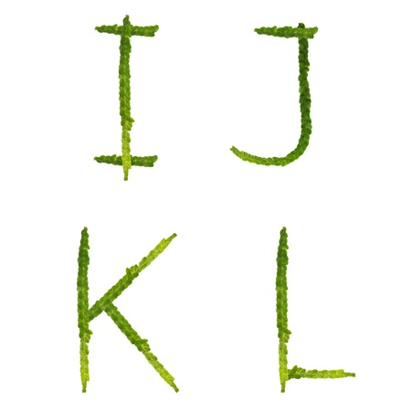 Beautiful Tree fern alphabet capital letter i-l, create from real fern tree