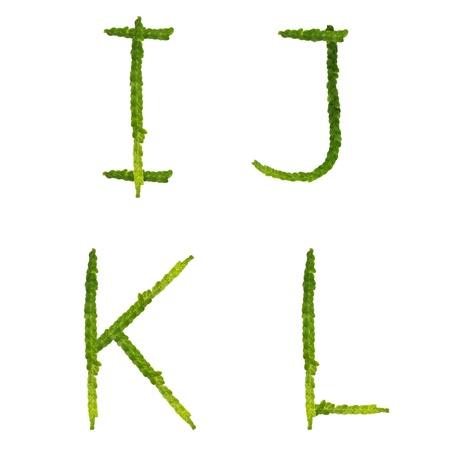 Hermoso �rbol helecho de capital alfabeto il carta, crear a partir de ra�ces de helechos