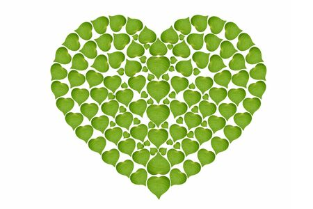 heart of green leaves sign high resolution, ecology concept ,isolated on white background