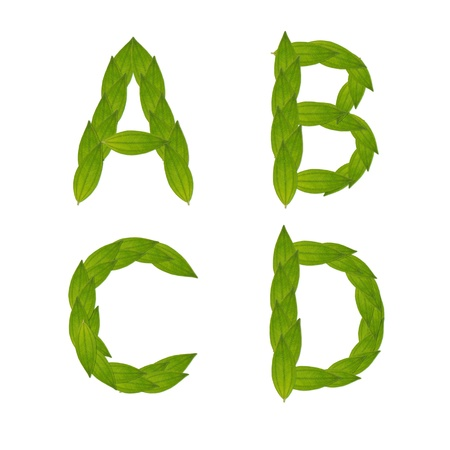 beautiful green leaf tree alphabet set a-d, green concept make from real leaf Stock Photo