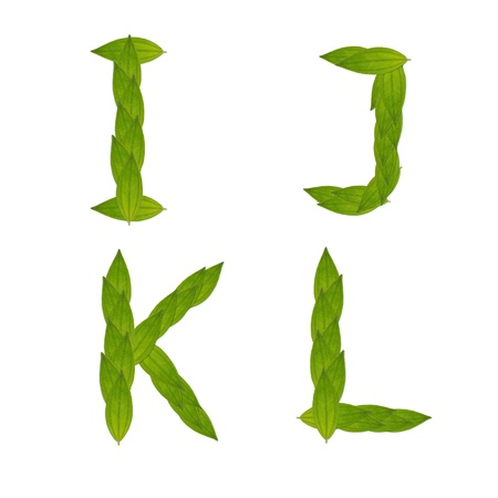 beautiful green leaf tree alphabet set i-l, green concept make from real leaf
