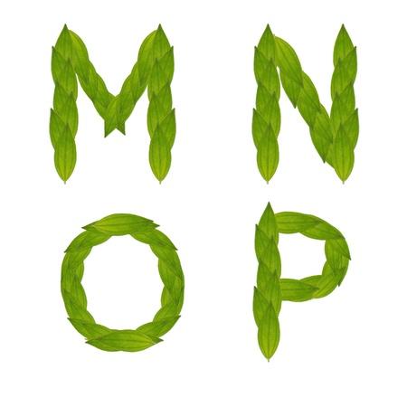 alfabeto de �rbol de hoja verde hermoso conjunto m-p, hacen del concepto verde de hoja real