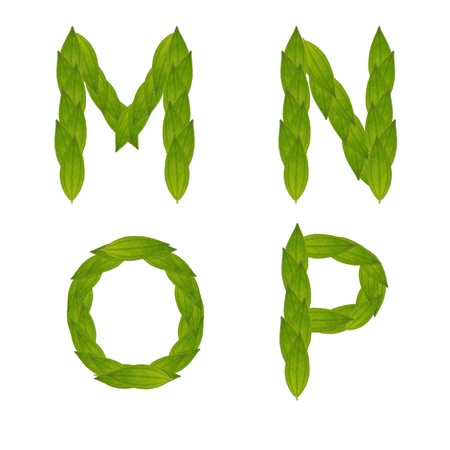 mp: beautiful green leaf tree alphabet set m-p, green concept make from real leaf