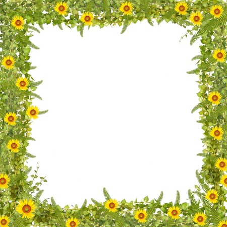 million heart tree frame with sunflower and fern