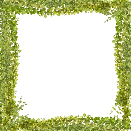 million heart tree frame photo