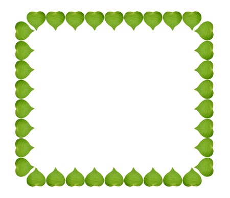 ecology concept with heart of green leaves in square sign, isolated on white background  Stock Photo