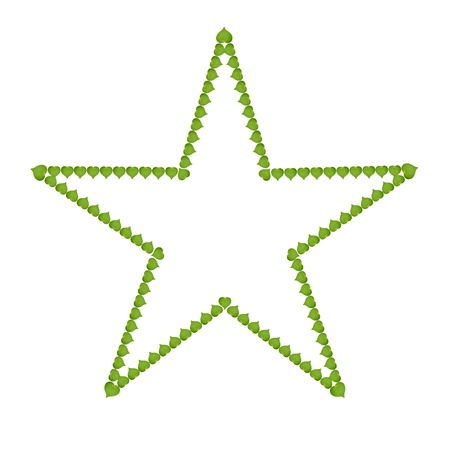 ecology concept with heart of green leaves in star sign, isolated on white background photo