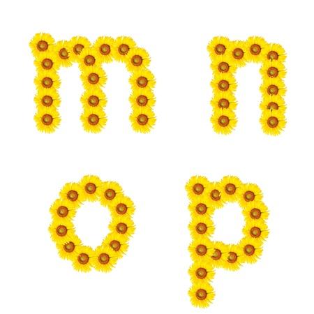 Beautiful yellow Sunflower alphabet, isolated m-p Stock Photo