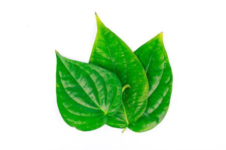 betel leaf is herbal Stock Photo