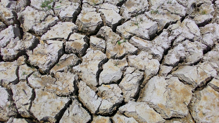 lack water: the earth texture  of land drought the soil ground cracks and no water lack of moisture in dry hot weather
