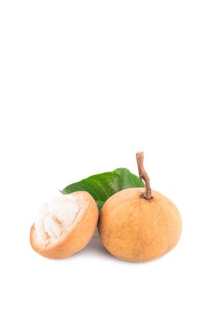 fresh santol cut half and santol leaf on white background planting agriculture food isolated