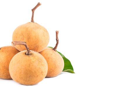 sandoricum koetjape ( santol ) is  delicious fruit on white background planting agriculture food isolated Reklamní fotografie