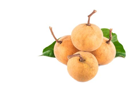 bunch of sweet santol fruits and santol leaf on white background planting agriculture food isolated