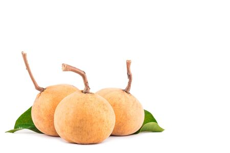 ripe santol fruits group and green santol leaf  on white background planting agriculture food isolated
